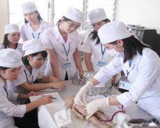 Sinh viên theo ngành Y Dược cần phải chú trọng vào thực hành