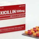 Thông tin quan trọng về thuốc Amoxicillin cần biết